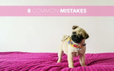 Canine Psychology & Shaping Behavior: Part 7 – Eight Common Mistakes Owners Make