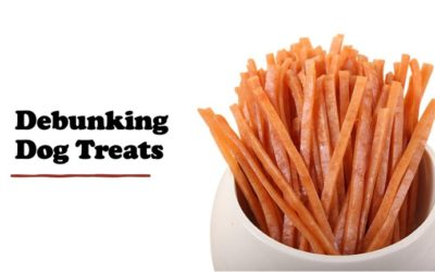 Debunking Dog Treats – Are You Really Treating Your Dog?