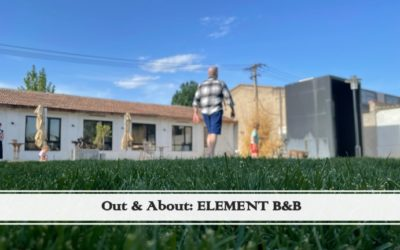 Out & About: Element – Dog Friendly B&B