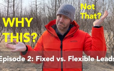 Why This & Not That: Fixed vs. Flexible Leads
